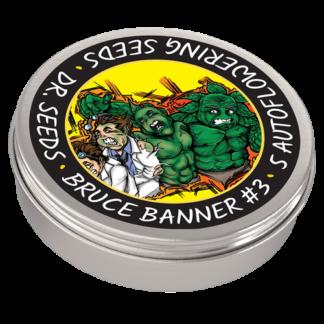 Bruce Banner #3 Autoflowering Feminized Seeds (5 cannabis seeds)