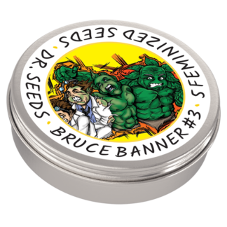 Bruce Banner #3 Photoperiod Feminized Seeds (5 cannabis seeds)