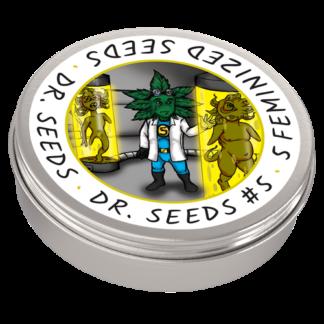 Dr. Seeds #5 Photoperiod Feminized Seeds (5 cannabis seeds)