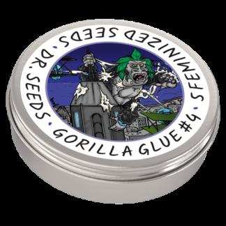 Gorilla Glue #4 Photoperiod Feminized Seeds (5 cannabis seeds)