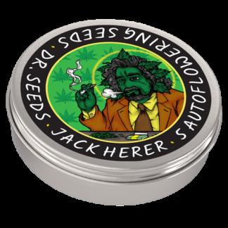 Jack Herer Autoflowering Feminized Seeds (5 cannabis seeds)