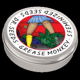 Grease Monkey Photoperiod Feminized Seeds (5 cannabis seeds)