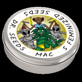 MAC Photoperiod Feminized Seeds (5 cannabis seeds)